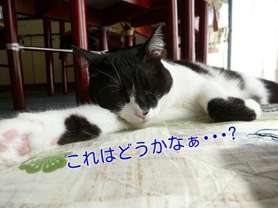 P1280128編集②.jpg