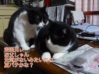 P1350784編集②.jpg