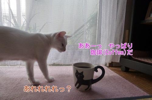 P1360311編集②.jpg