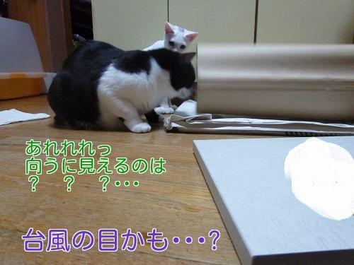 P1360884編集②.jpg