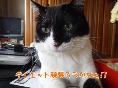 P1370758編集②.jpg