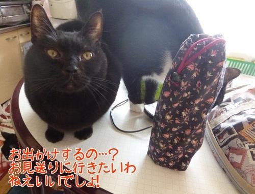P1420144編集②.jpg