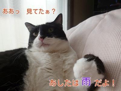 P1440004編集②.jpg