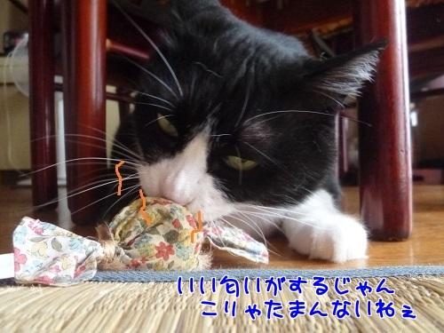 P1560787編集②.jpg