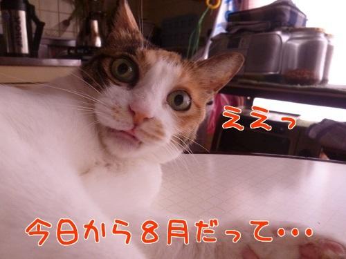 P1570400編集②.jpg