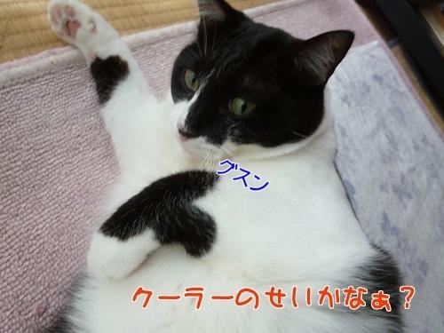 P1580322編集②.jpg