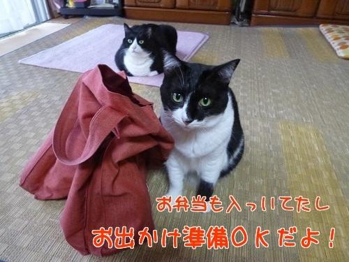 P1580548編集②.jpg
