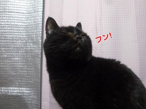 P1640655編集②.jpg