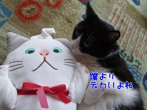 P1670204編集②.jpg