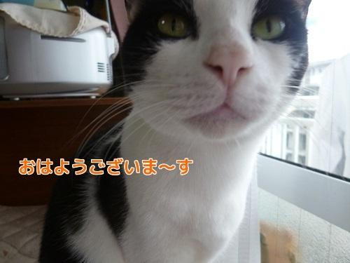 P1710065編集②.jpg