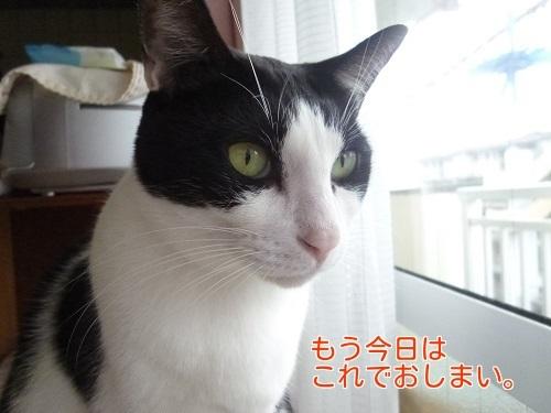 P1710069編集②.jpg