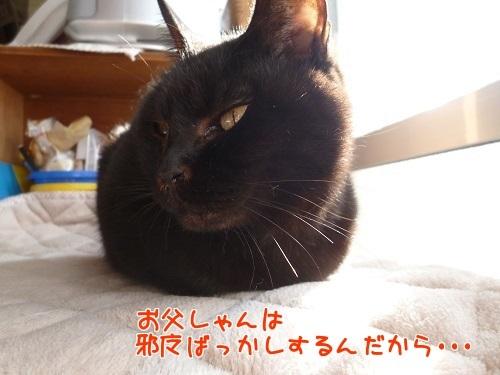 P1730198編集②.jpg