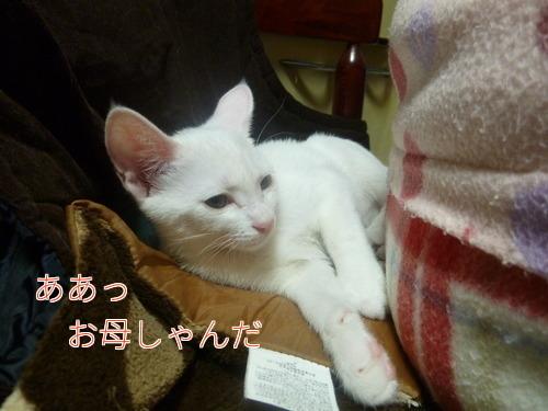 P1850709編集②.jpg