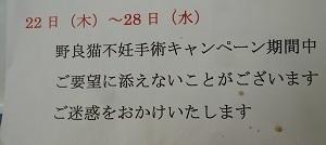 P1870960編集①.jpg