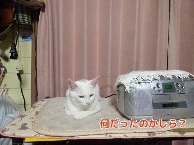 P1880789編集②.jpg