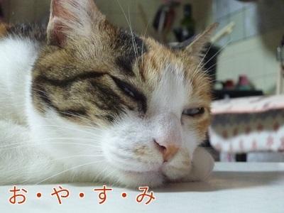 P1890927編集②.jpg
