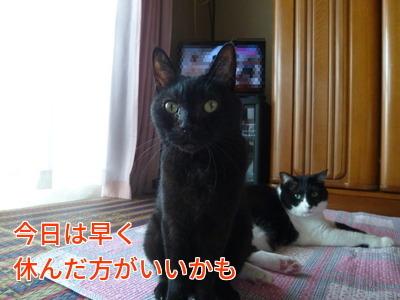 P1900734編集②.jpg