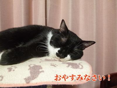 P1920014編集②.jpg