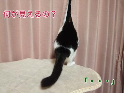 P1920624編集②.jpg