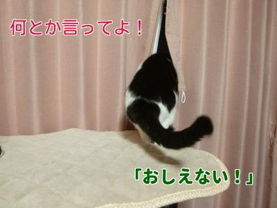 P1920626編集②.jpg