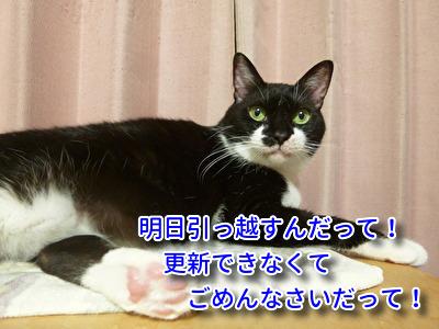 P1940314編集②.jpg